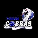 Magna Cobras Basketball Logo